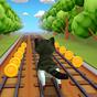 Cat Run 3D 1.0