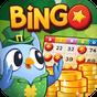 Bingo Pop 5.1.40