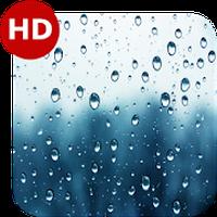 Relax Rain - Nature sounds