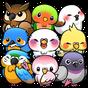 Bird Life 1.6.12