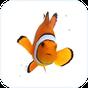 Ikan Badut Animasi Papan Tuts