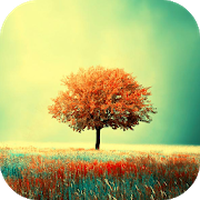 Awesome-Land : Beautiful Nature Live wallpapers icon