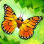 Flutter: Butterfly Sanctuary 2.780
