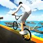 Free World BMX 1.1.0