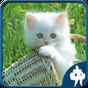 Los gatos Jigsaw Puzzle 1.8.5