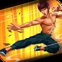 Kung Fu Attack: Action RPG hors ligne 1.6.5.186
