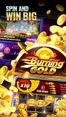 Gold coast casinos australian kelpie züchter