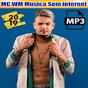 MC WM Musica Sem internet 2019 1.0