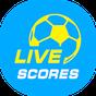 Bóng đá 24h - Xem bóng đá trực tuyến 3.3.6