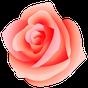 WAStickerApps - Flowers 1.0