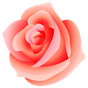 WAStickerApps - Fleurs 1.0