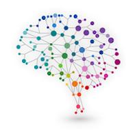 NeuroNation-Beyin egzersizleri Simgesi
