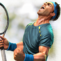 Ultimate Tennis 3.16.4417