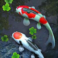 Fisch-Teich Live Hintergrund Icon