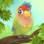 Bird bnb 0.5