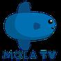 Mola TV (Beta) 0.1.20
