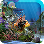 3D Aquarium Live Wallpaper HD 1.6.3