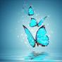 Kelebek Duvar Kağıdı 13