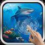 Interactive Shark 8.0