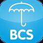 BCS Online