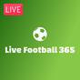 Live Football 365  APK
