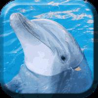 Ícone do Golfinho Parede Animado