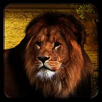 Aslanlar Canlı Duvar Kağıdı Simgesi