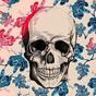 Skull Wallpapers 1.0