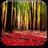 Autumn Landscape Wallpaper Simgesi