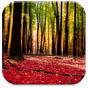 Autumn Landscape Wallpaper 1.0.2