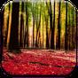Autumn Landscape Wallpaper 1.0.2