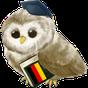 Learn German Free 4.0
