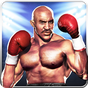 Boxing Champion Real Punch Fist 6.1