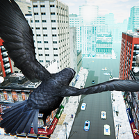 San Andreas Flying Bird apk icono