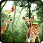 Rain Forest Live Wallpaper 1.12