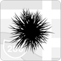 Plag — Rede de Informação 2.4.6