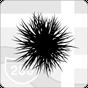 Plag — Information Network 2.5.10