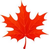 3D Autumn Maple Leaves Simgesi