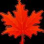 3D Folhas de Bordo de Outono 1.5.1