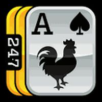 247 Solitaire + Freecell PRO apk icon
