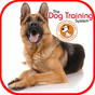 Dog Training 1.0