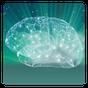 Allenamento memoria completa 2.5