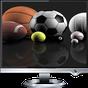 Live Sports TV Channels 1.0 APK