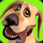 Talking John Dog: Funny Dog 5.25.0
