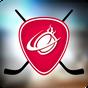 Pin Hockey - Ice Arena 1.2