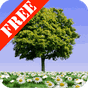 Summer Trees Free 1.20