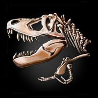 Ícone do The Lost Lands:Dinosaur Hunter