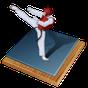 Taekwondo Bible (WTF)  APK