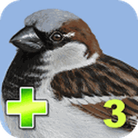 iBird Yard Plus Guide to Birds Simgesi