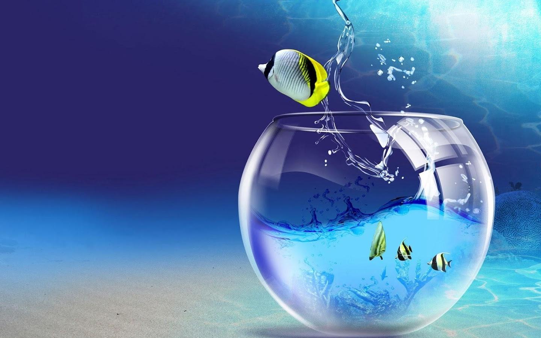 Aquarium Fond D Ecran Anime Avec Des Poissons Android Telecharger